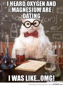 ChemistryCatOnDating-32707