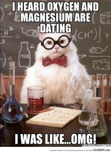 ChemistryCatOnDating-32707