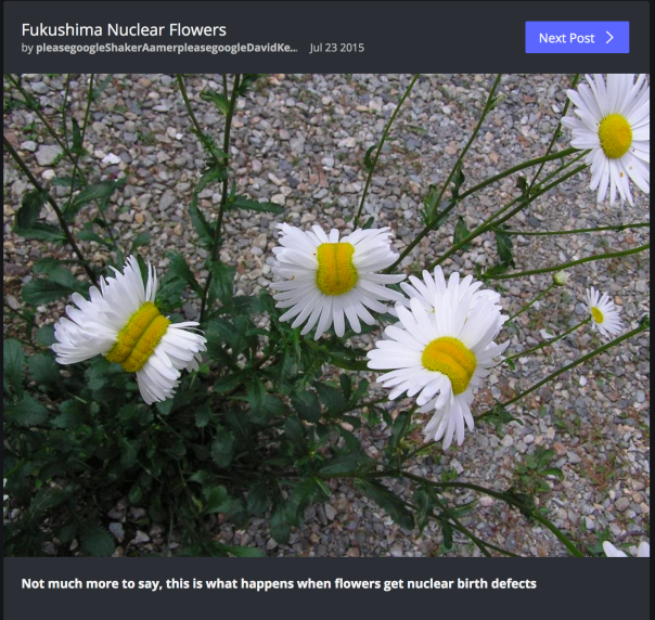 Nuclear flowers? via http://imgur.com/gallery/BZWWx